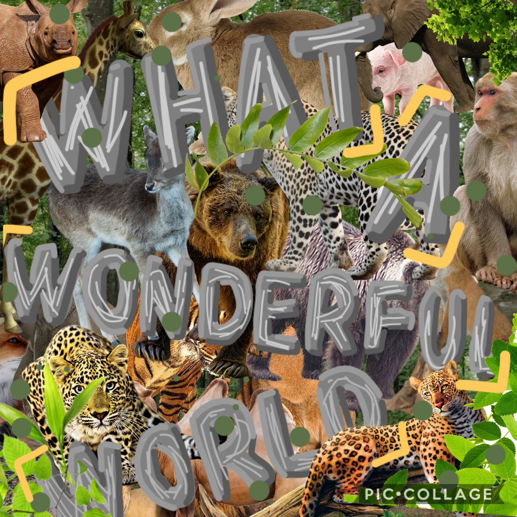 🐅🐆🦓🦍🦧TAP🐘🦛🦏🐪🐫🦒🦘🐃🐂🐄🐖🐏🐑🦙🐐🦌🐓  What's your favorite animal? comment below!