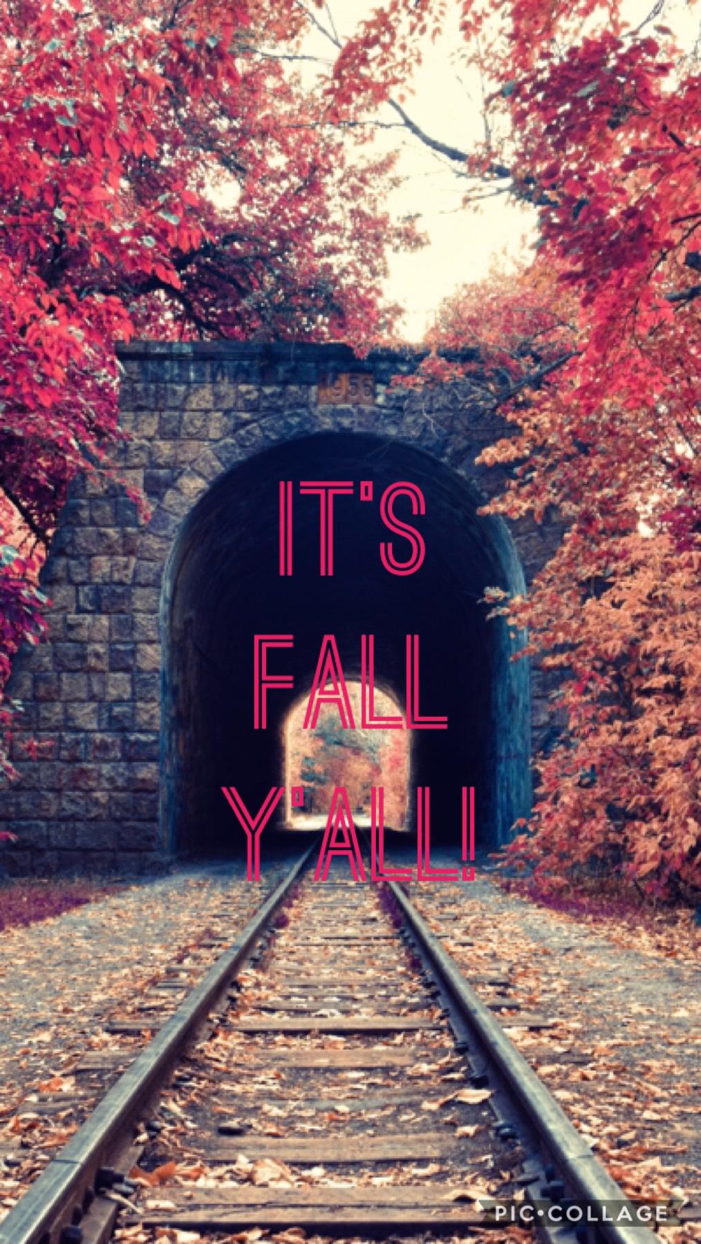 Happy Fall/ Winter LOL 🥶😂
