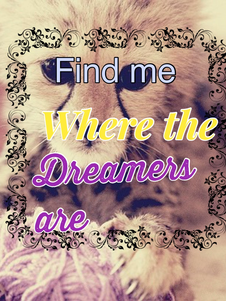 Find me where the dreamers are