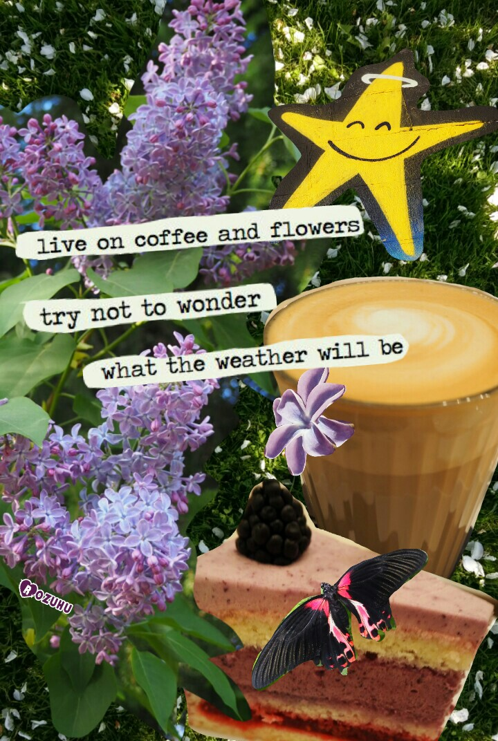 Dumdedum, life is good! Sitting in the garden with a coffeee, sun shining, flowers everywhere.... 😎 🌸 ☕