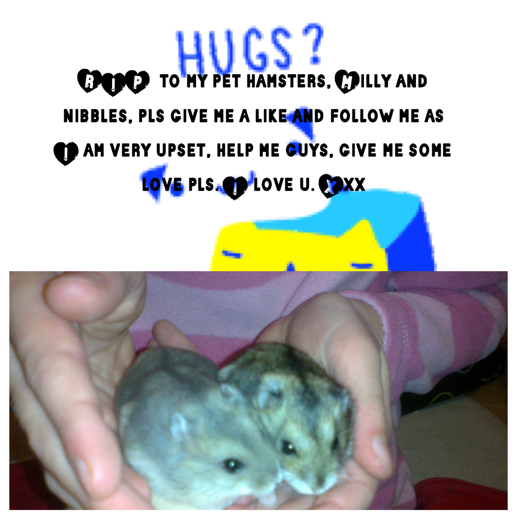RIP  to my pet hamsters, Milly and nibbles, pls give me a like and follow me as I am very upset, help me guys, give me some love pls. I love u. Xxx