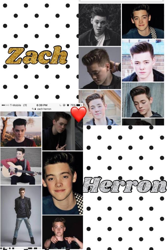 I love zach so much! #celeb crush!❤️