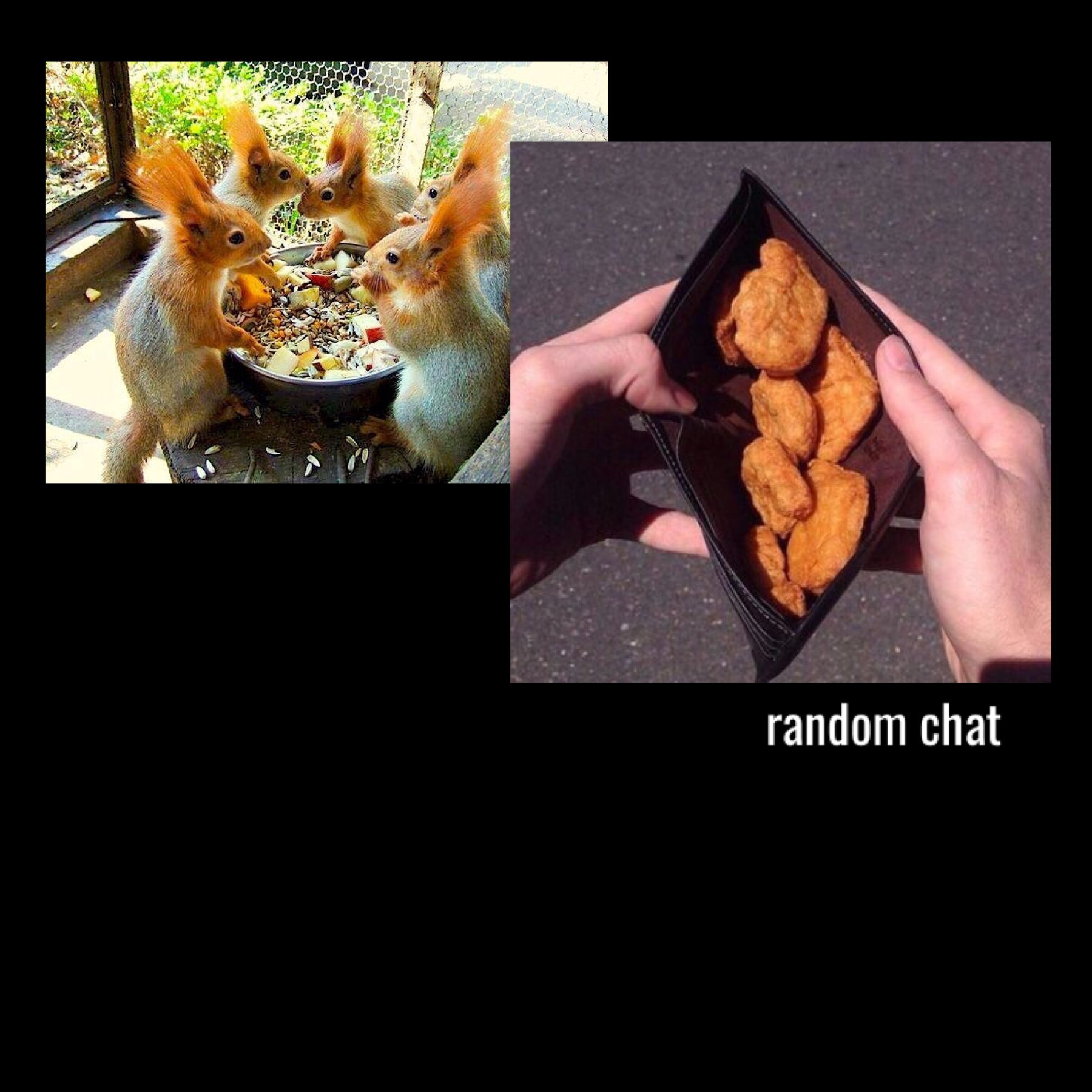 chat about random things and make friends