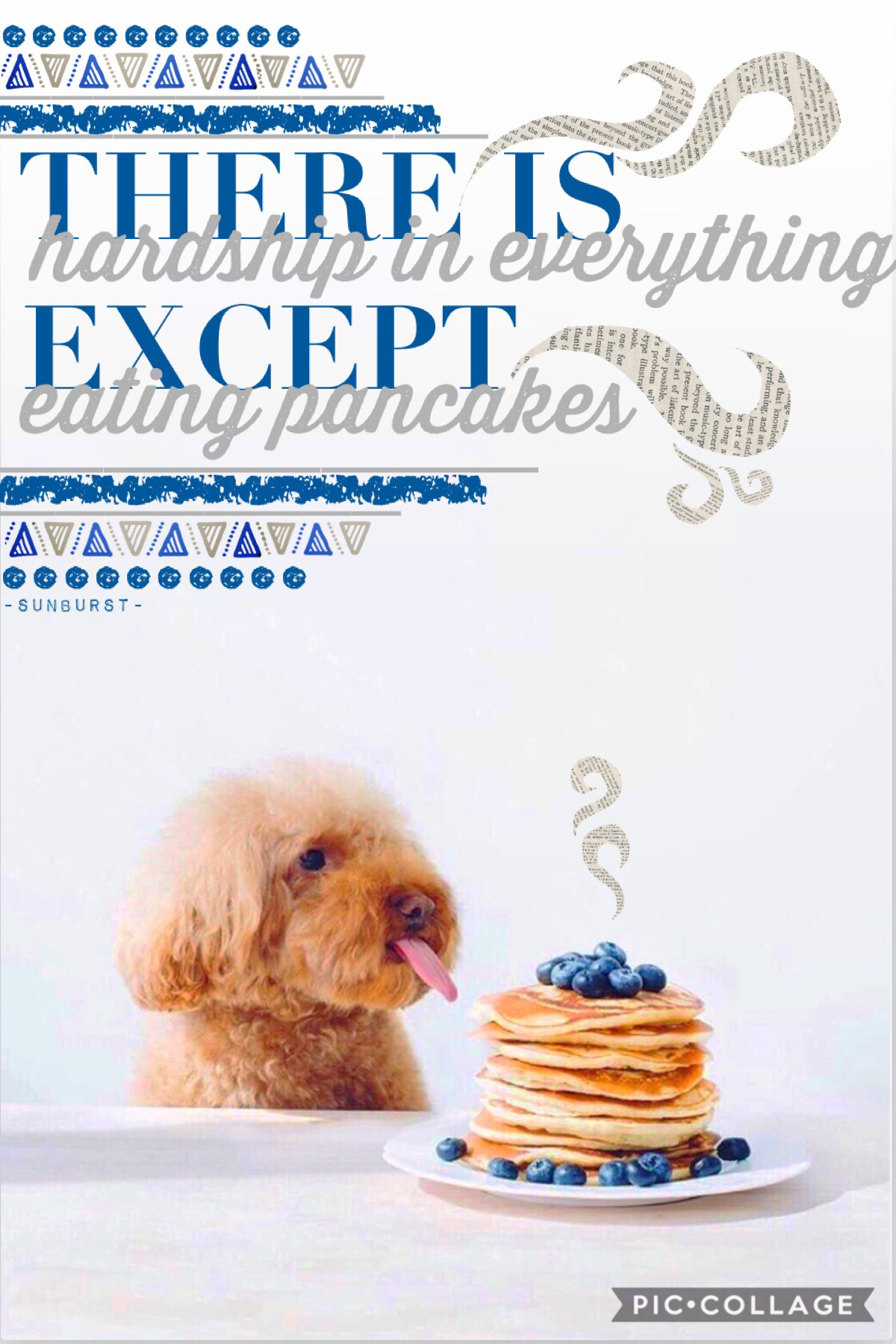 > CLICK FOR PANCAKES < 🥞 🤤  THE PUPPY IS SOO FWUFFY credits to simplicity_extras! SHE IS AWESOME FOLLOW HER QOTD: pancakes or waffles? AOTD: PANCAKES 🥞