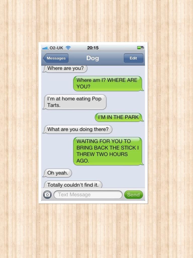 Hahah dog 🐕🐶