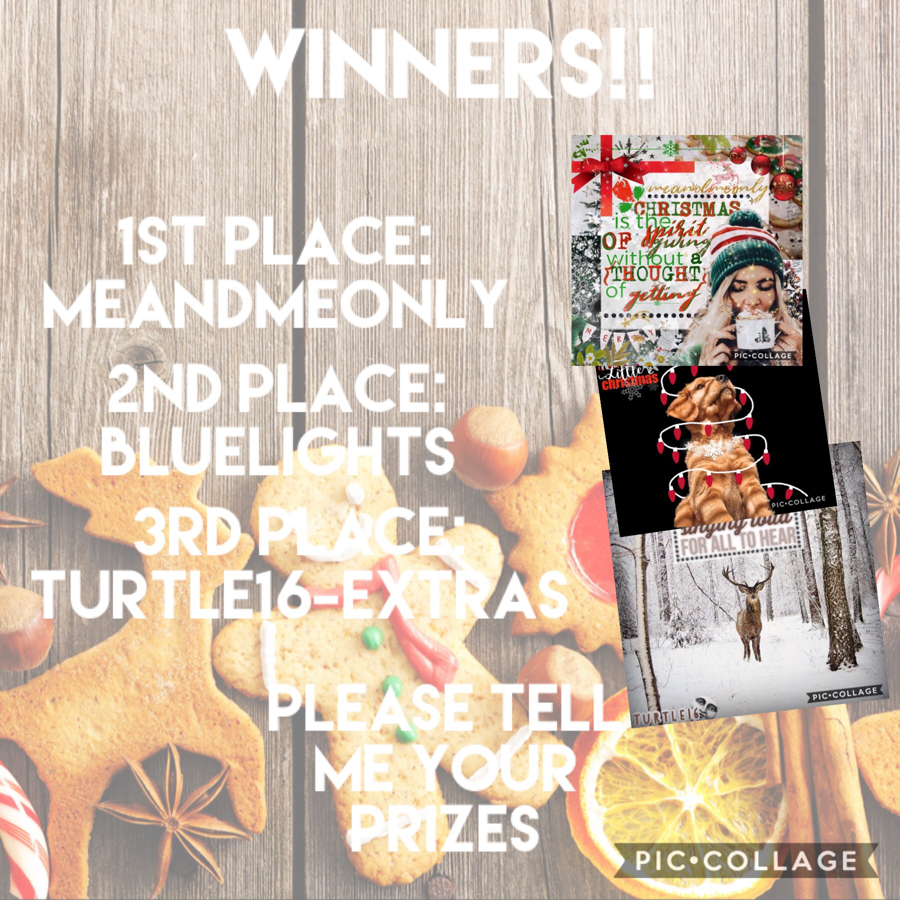 Congratulations to everyone who entered!! This was a tough contest to judge. Honestly. You guys are all so talented!!! Merry Christmas!🎄