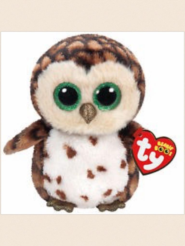 Sammy  the owl