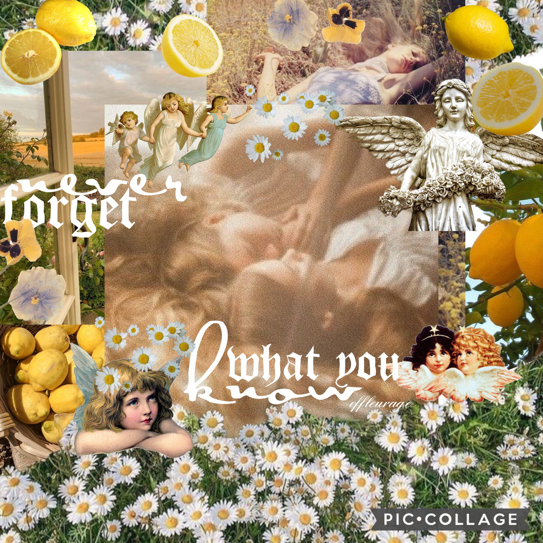 🍋tap🍋  i really like thisss! once again, this is inspired by multiple people so irdk who to credit bc i go and look at a bunch of collages not looking who made them and then like get ideas idk 🤷♀️ anyways, i hope you have a good rest of your day/evening/