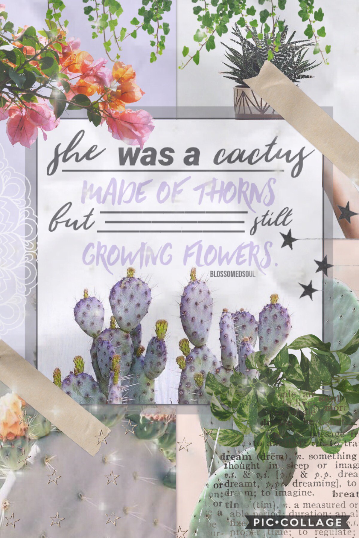 t a p  first collage of my new theme! qotd: do you like this new theme? ♥️