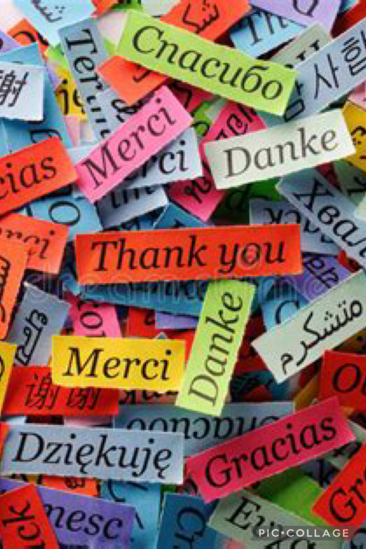 Thank you for 1000 followers! Happy s'immerger Ps: I havé Covid-19  #Cuarantine 24/08/21
