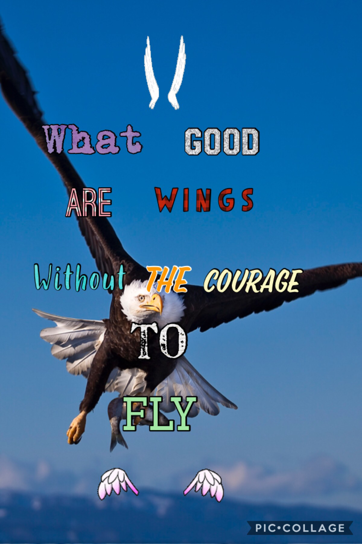What good are Wings without courage