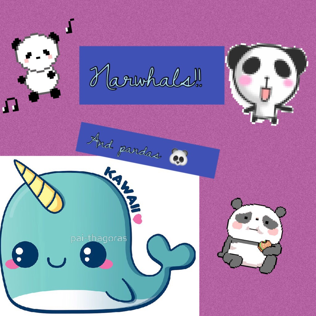 Narwhals and pandas are so cute!😘