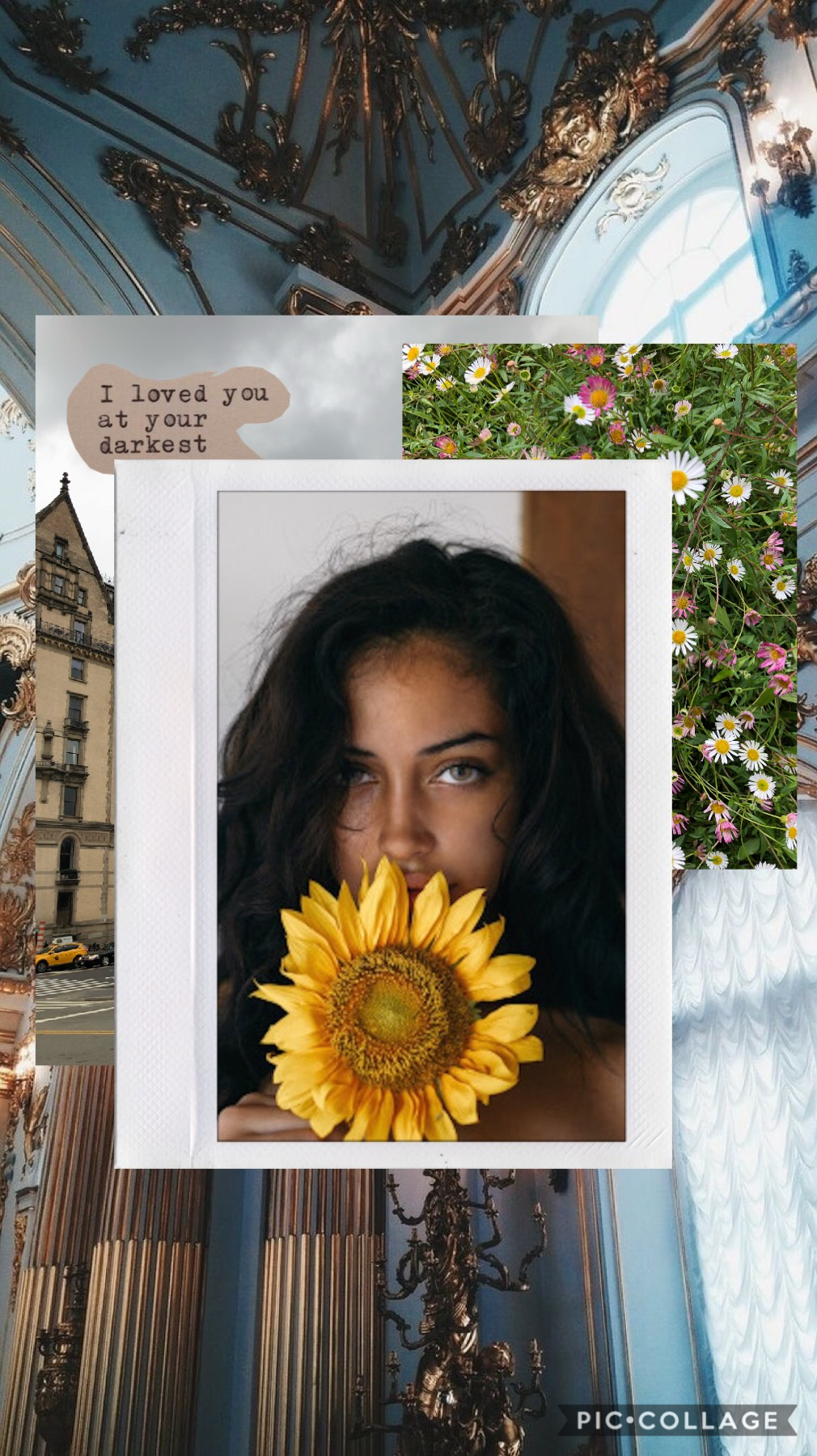I loved you at your darkest 💖 •QOD: Favorite Food?• — miss you guys —— Need some new friends 🌻