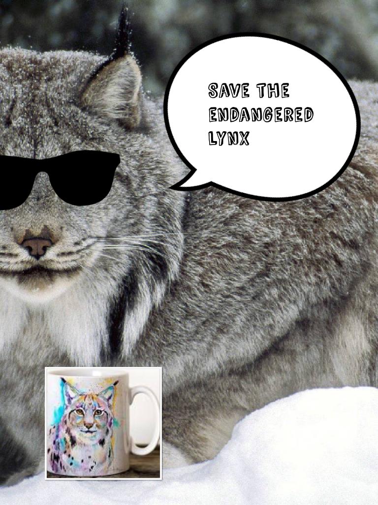 Save the endangered lynx