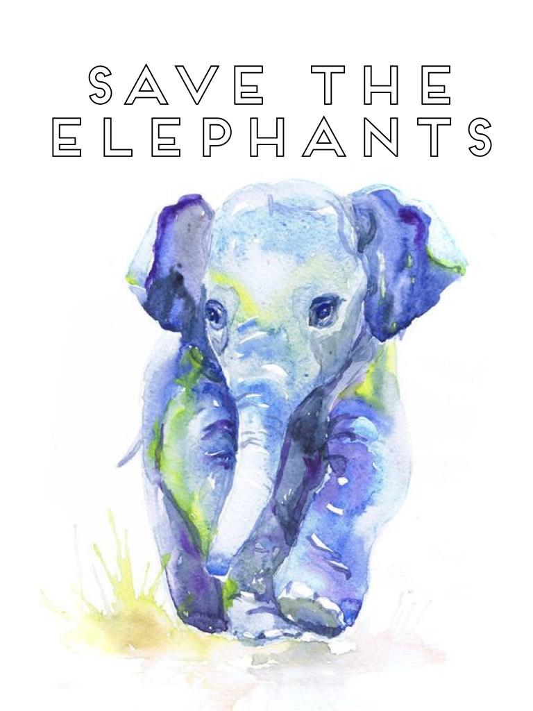 🐘Save the Elephants!🐘