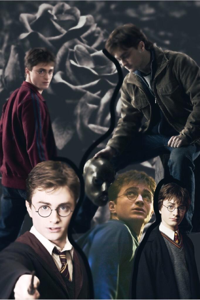 Harry 🖤