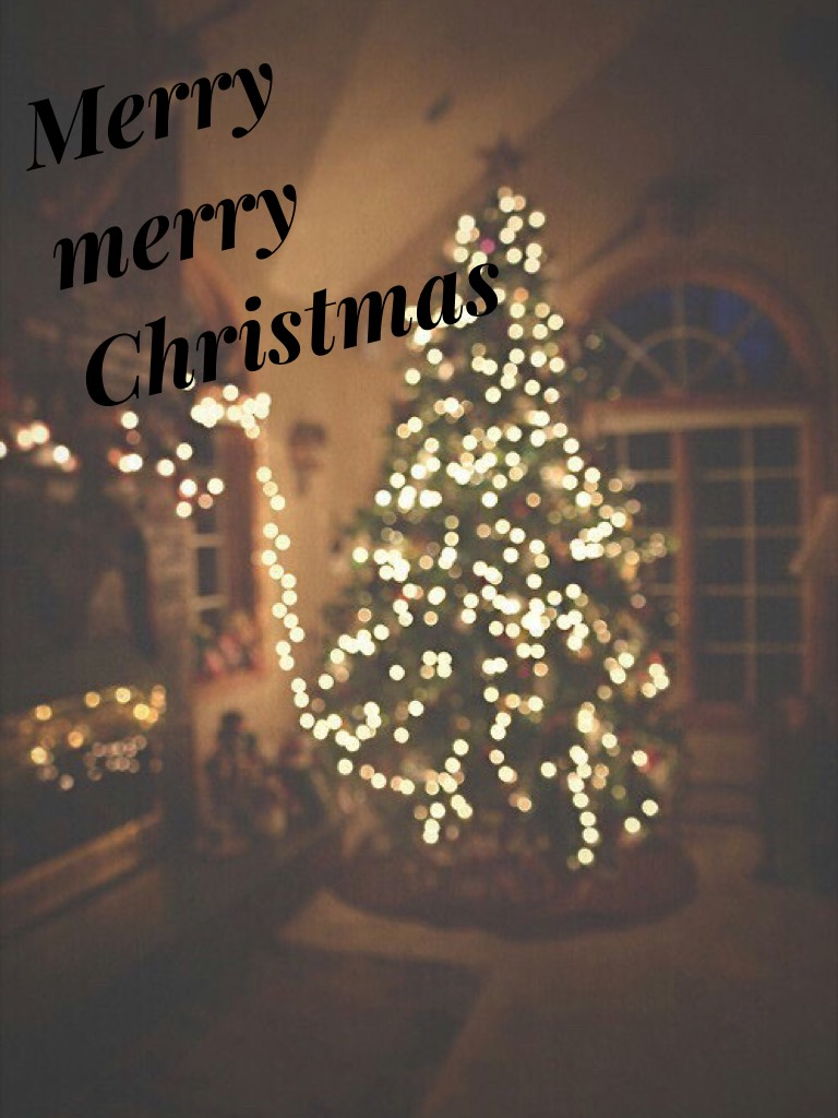 Have a Merry Christmas and stay safe this holiday<3