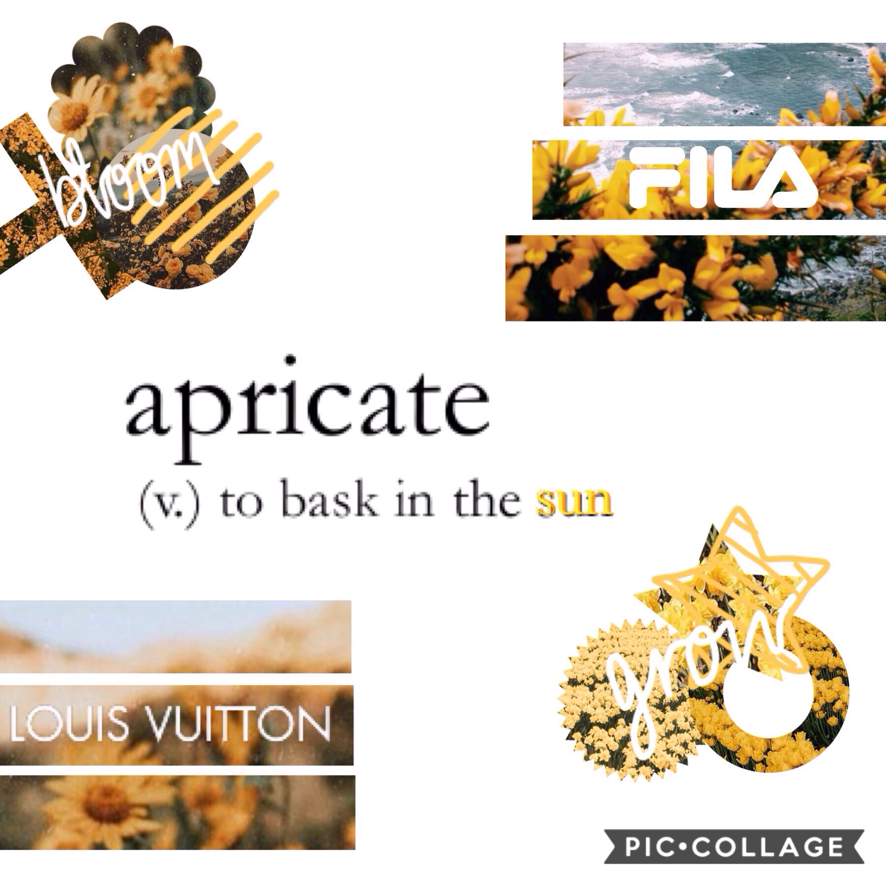 "{ apricate } - ""to bask in the sun"" ☀️🌻⛅️ { 25/08 } today is a nice sunny day where I am, to match the theme of this bright, happy collage😊✨  even if you don't have a sunny day today, think happy and on the bright side! my goal: to stay positive and be ki"