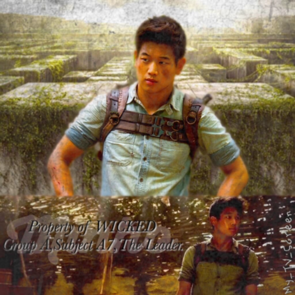 The Maze Runner #5 Click Here Guess what guys, I noticed this week that sometime last month was my 1 year anniversary, thank you so much to everyone who follows me!!!! Do you want me to do a giveaway or competition??Thanks again!!