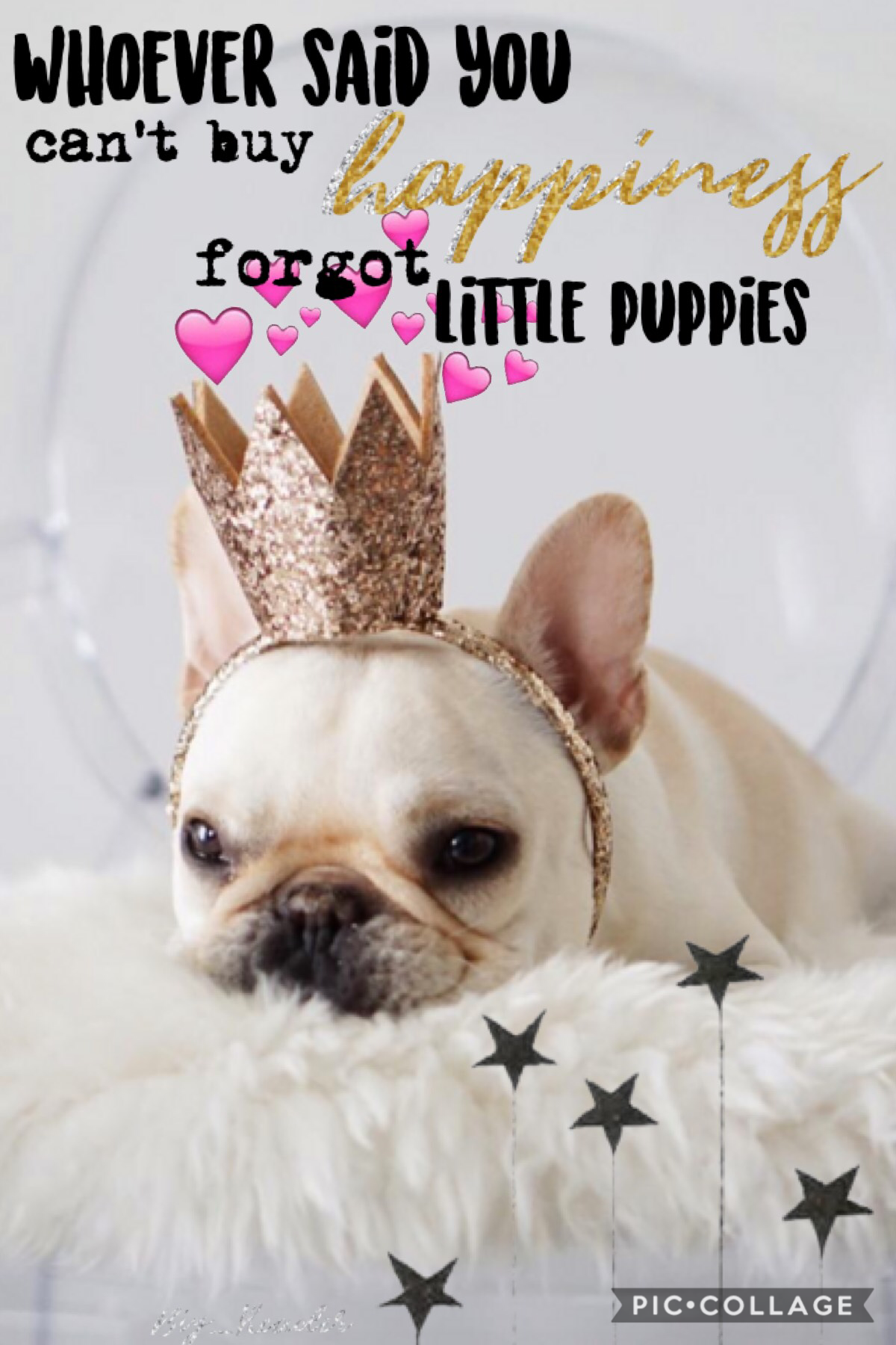 This collage reminds me of one of my friends, she LOVES her French bulldog!! 💕 hope everyone is having a great day!! Not doing much today just studying for finals😎👌🏼🌸 going to the lake this weekend!!😆💧