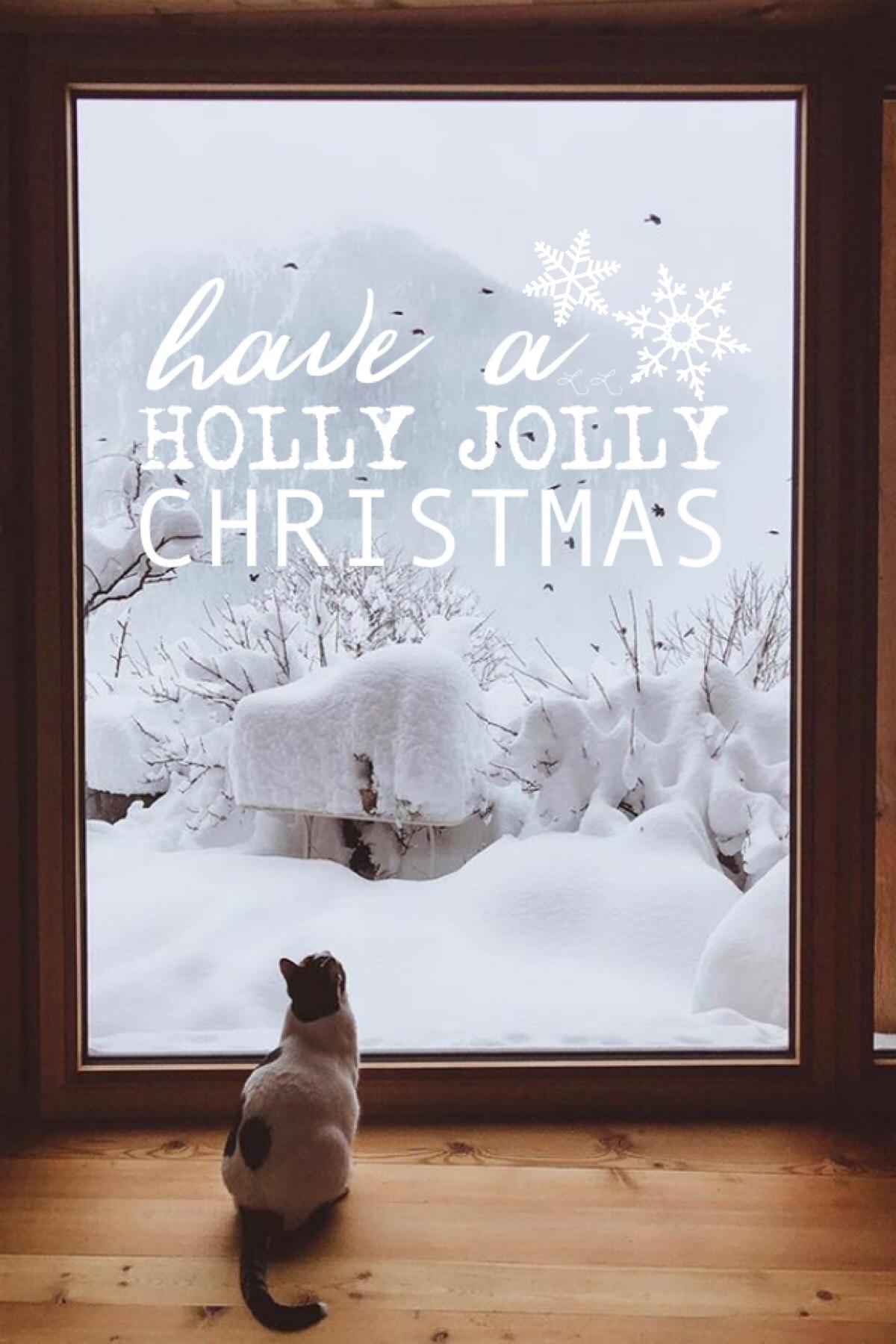 Happy Christmas Eve Eve!🌬☃️ hope you guys have fun holidays!!