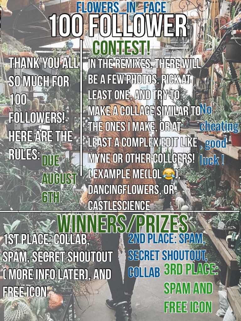 100 Follower Contest! My first contest, please enter! Vacation is going great!