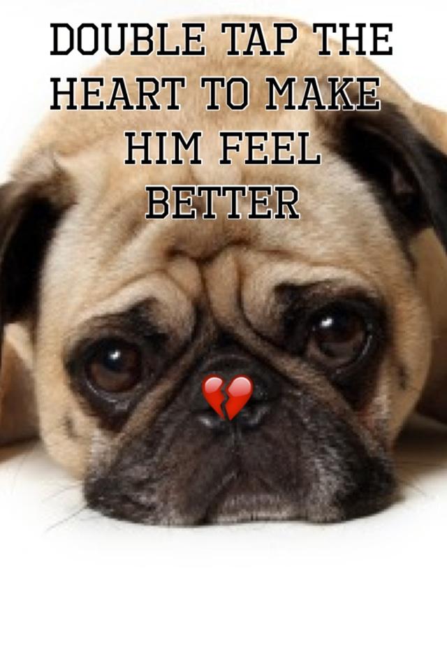 Pugsie's sad