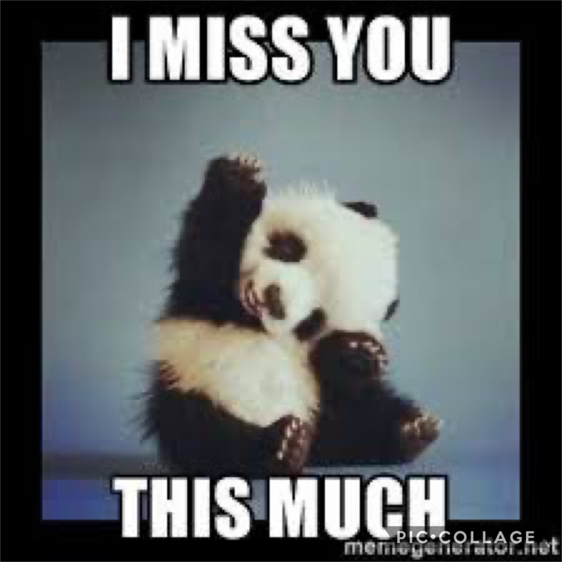 That's how much I miss you guys
