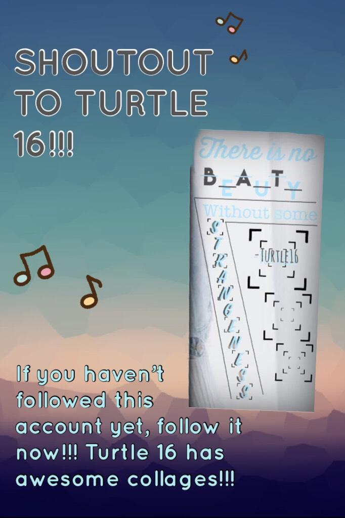 SHOUTOUT TO TURTLE 16!!!