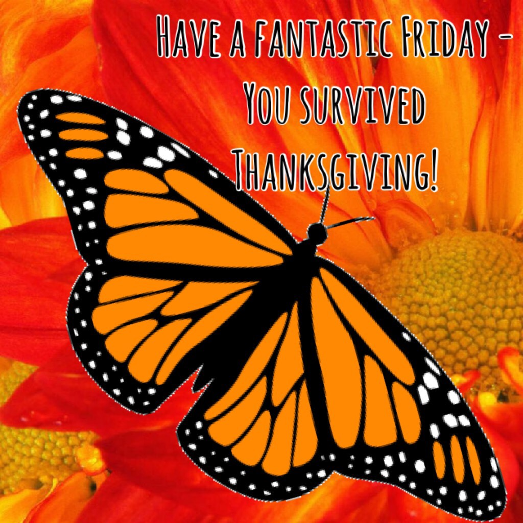 I survived Thanksgiving 2017  Butterfly