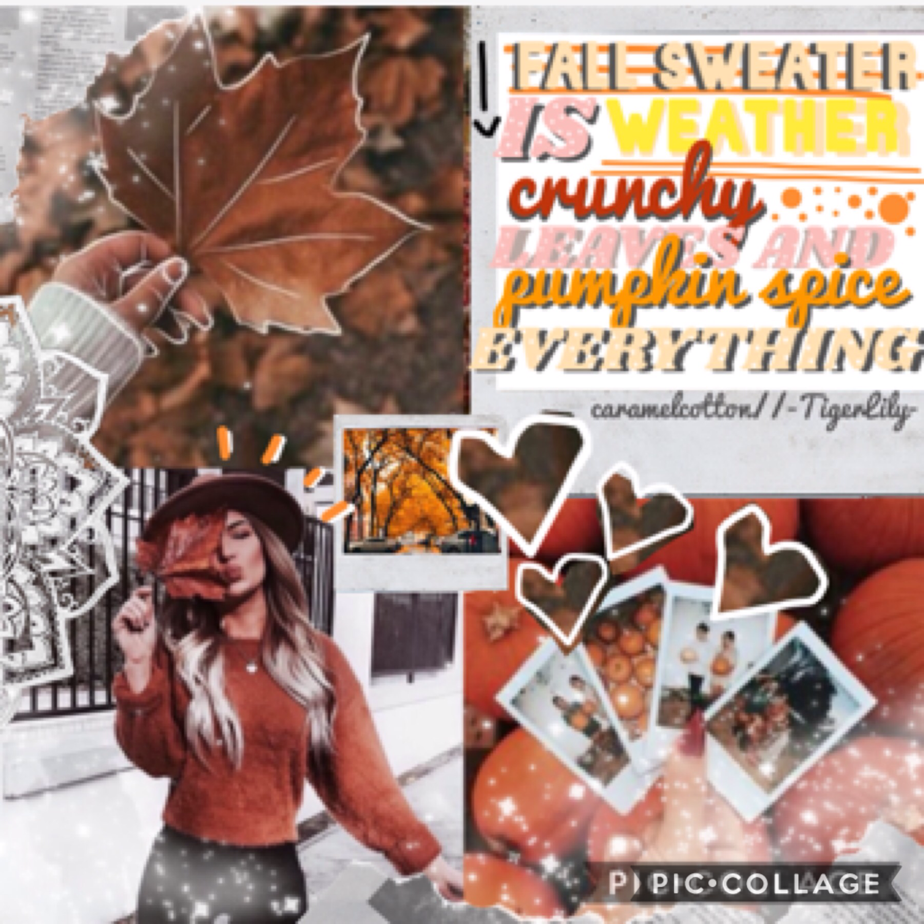 🌷collab with....🌷 -TigerLily-! She chose quote and I did background and text 💞  Did 11km walk legs are falling off 😴  qotd: are you dressing up 4 Halloween? aotd: yes as a clown 🎈  sotd: -TigerLily- 🐯