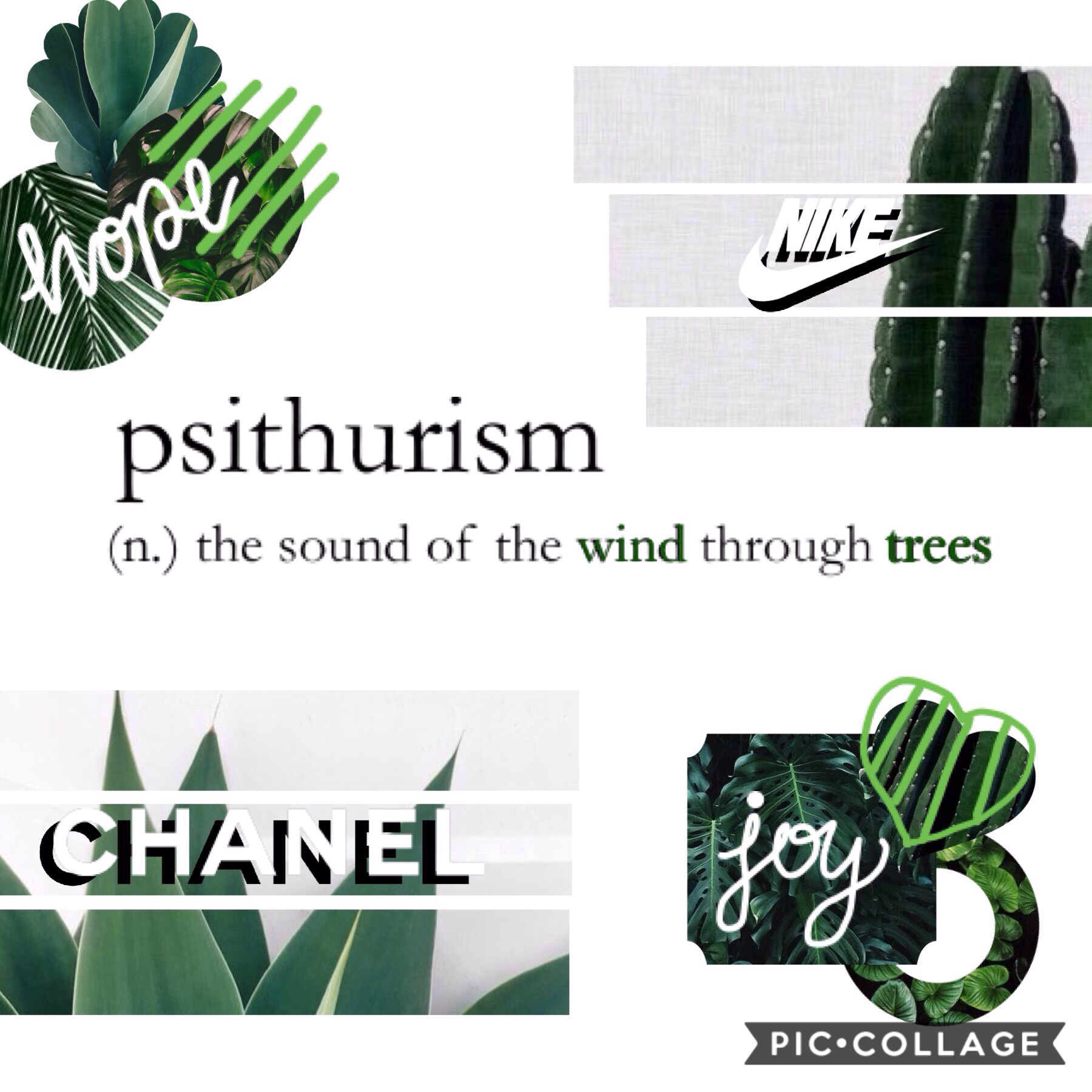 [ psithurism ] ~ 'the sound of the wind through trees' 🌲🌬🌳🌵 [ 17/08 ] 2nd collage of this new theme and I already feel refReShEd✨😇 even though assessments are filling my mind, I'm making room for you guys!🤗 I hope you week is going well and byeee! tyys! m