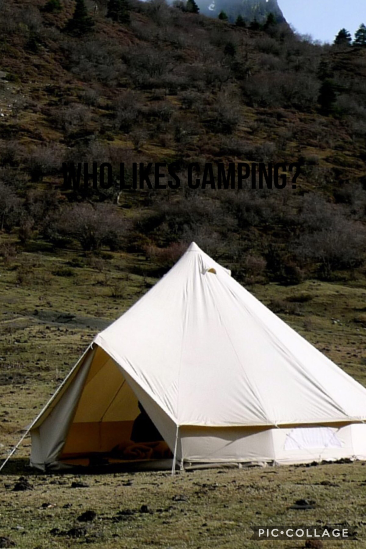 I have never gone camping but I'm going to go soon