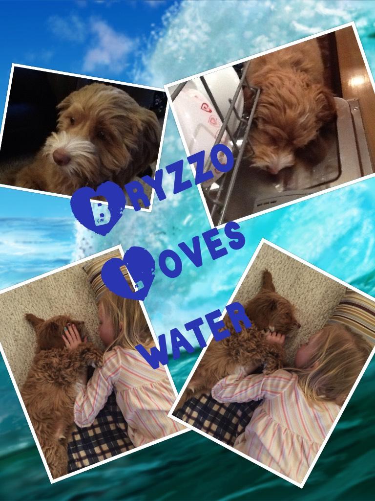 Bryzzo Loves water💦💧💧💧💧💧❄️🌊‼️‼️‼️‼️