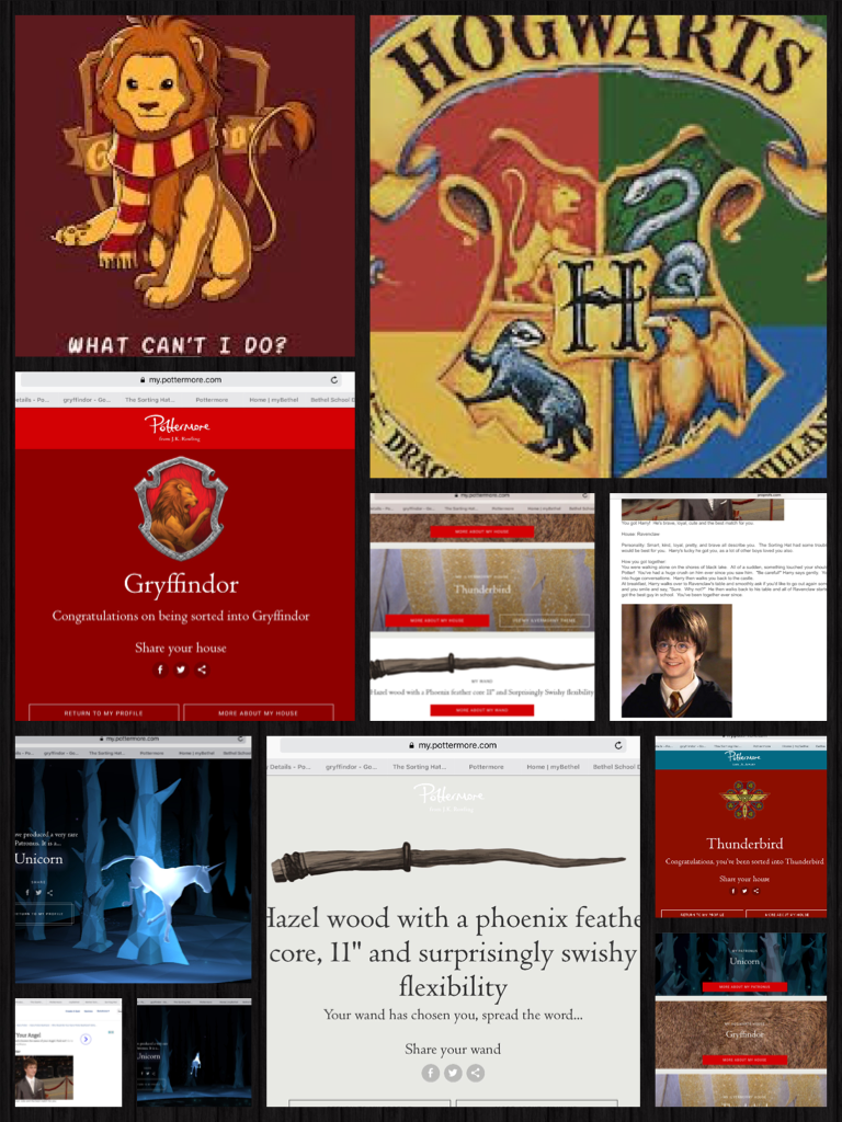 HARRY POTTER IS AWESOME!!!
