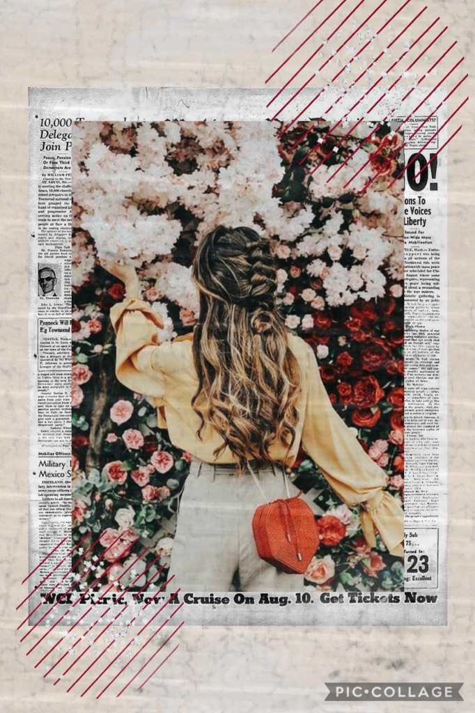 Collage by -HighTide-