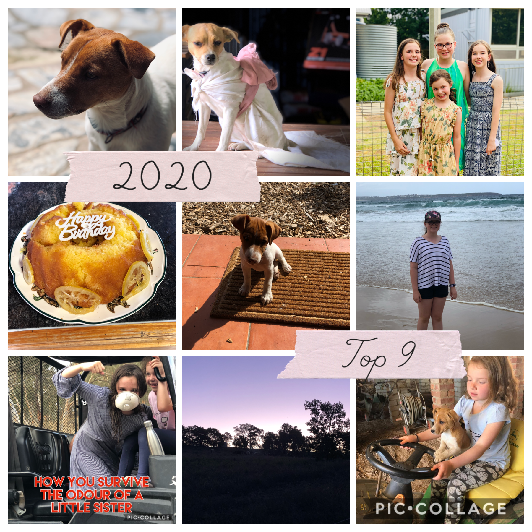 These are my top 9 pictures from 2020. Corona has been tough but we managed to stay strong. I am grateful that I was with my family all year. How do you feel about the year that has been and is almost gone? #familytime