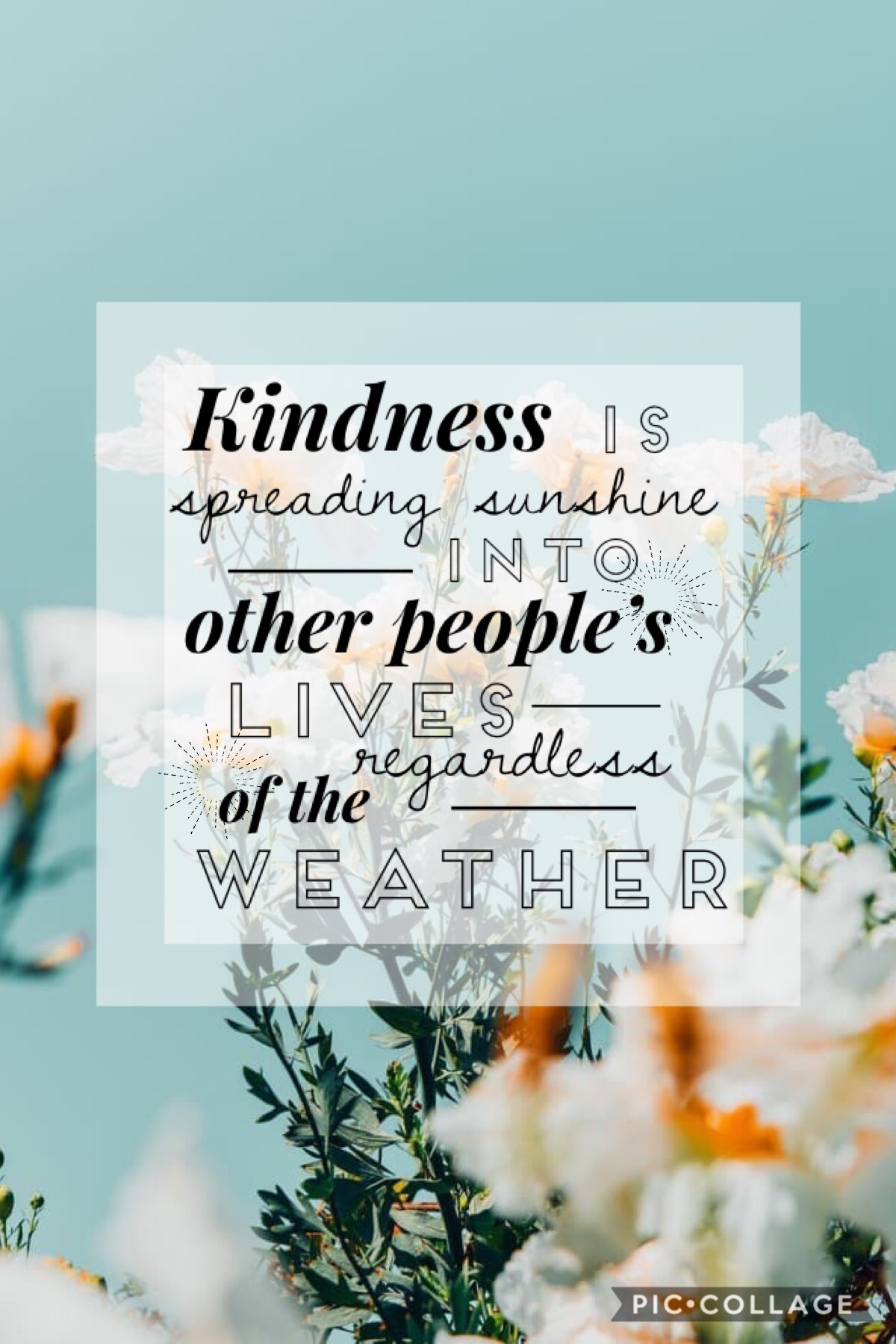 🌼Kindness🌼 Is spreading sunshine into other people's lives regardless of the weather.  ☀️☀️☀️