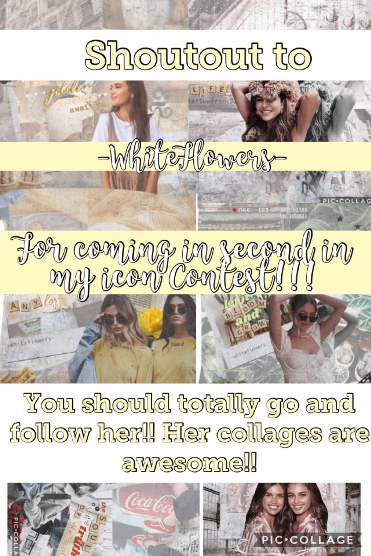 If you noticed I used her awesome collages to make the background of this collage!!