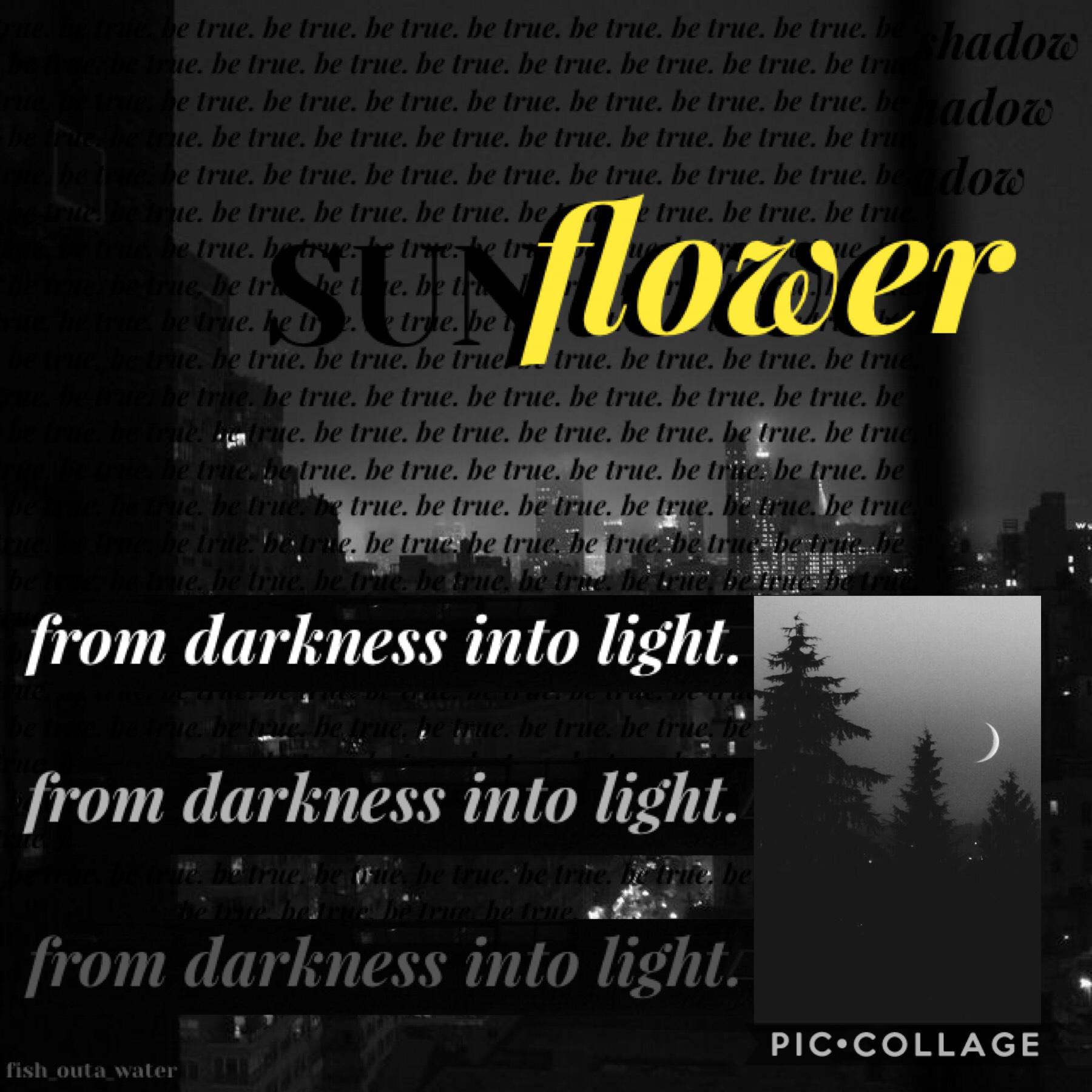 SUNFLOWER [Inspired by timetraveler]