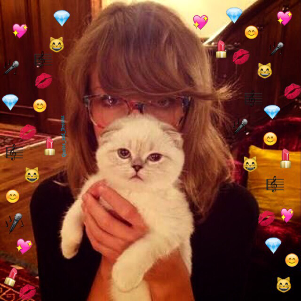 die taylor swifts cat - HD 1200×1200