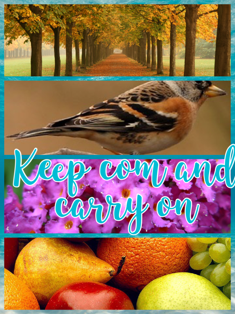 Keep com and carry on