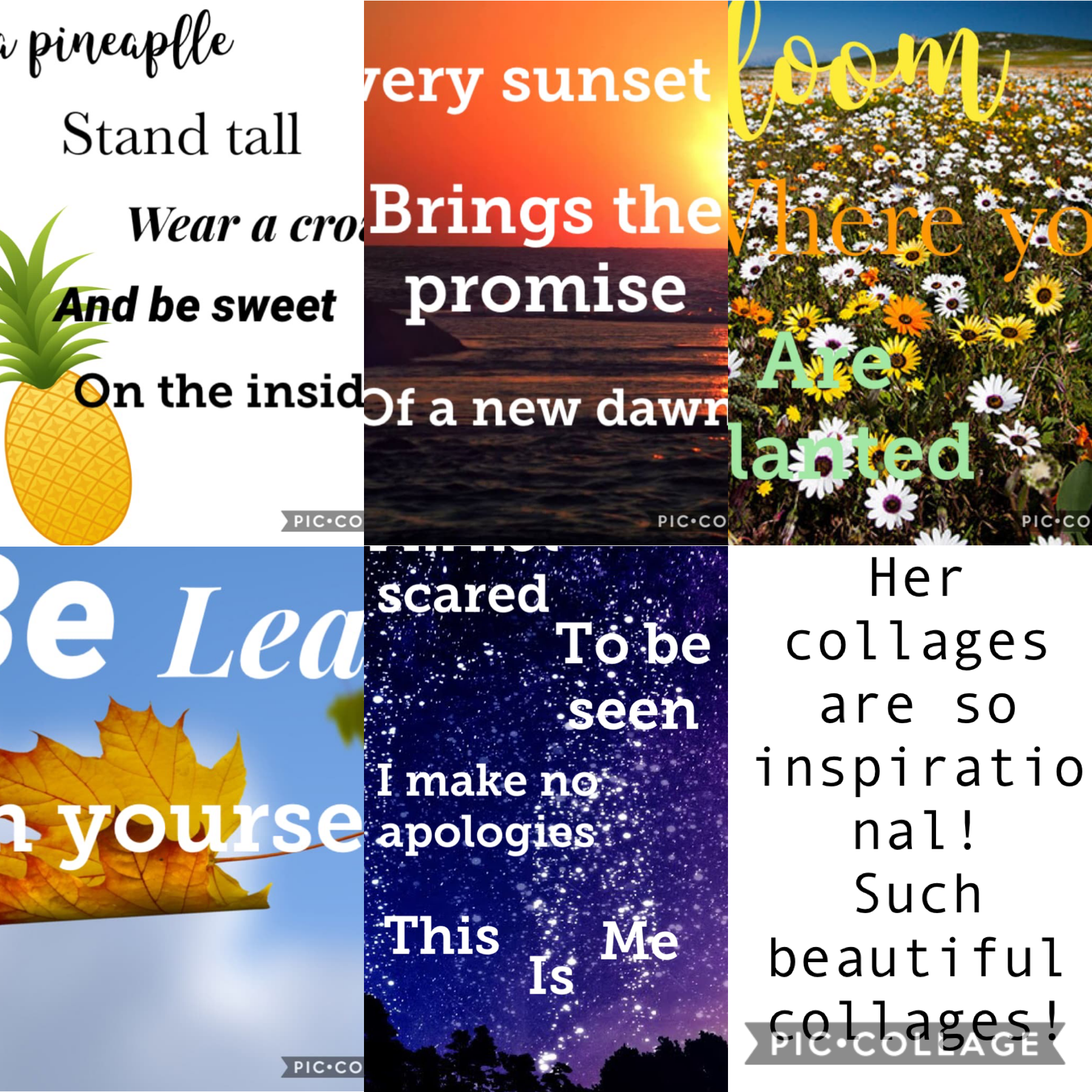 Collage by _sundara_FANPAGE