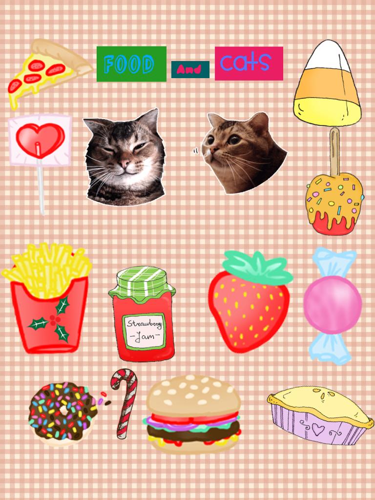 Food & cats