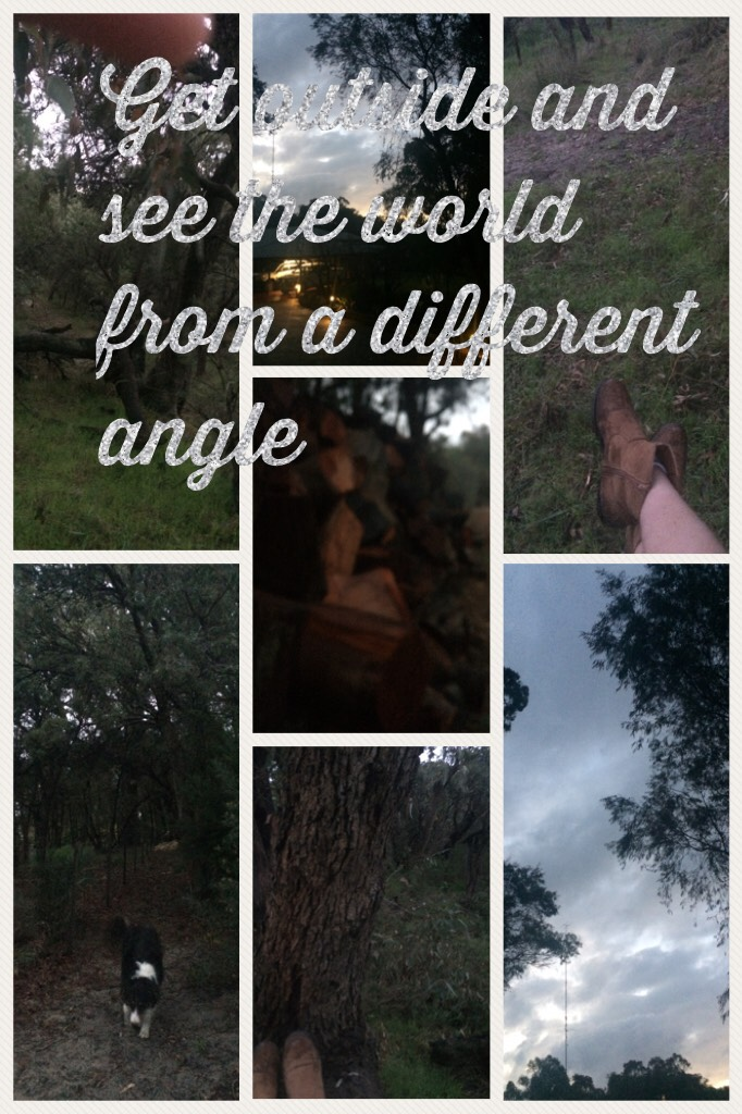 Climbing trees is fun guys😂🌲🌳 Ps. Sorry about the finger in the top left photo☝️