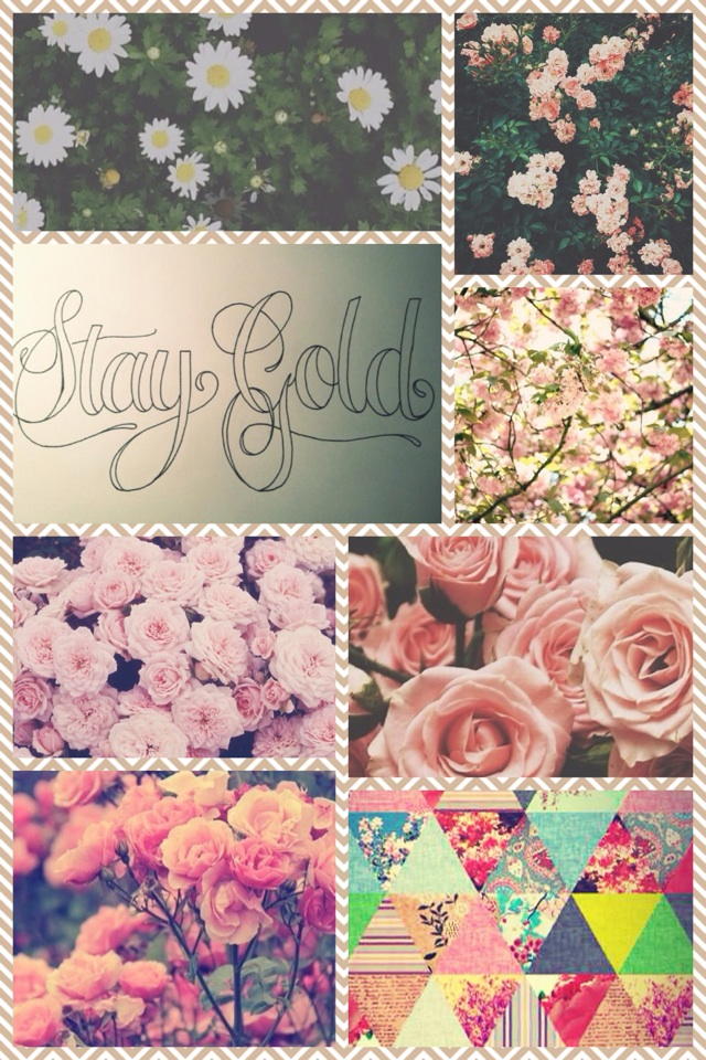 Flower! Stay gold 💎