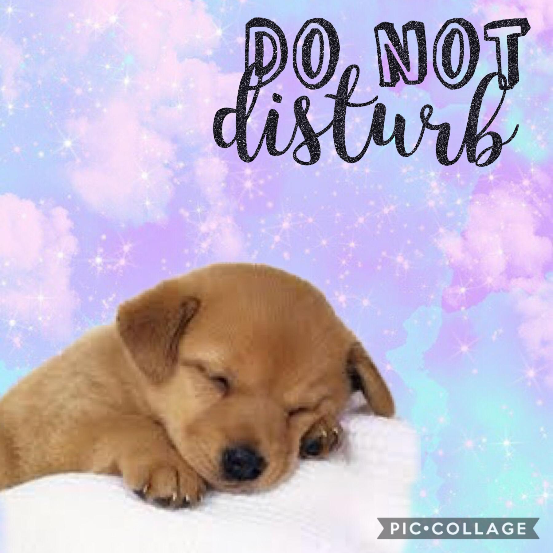 #donotdisturb