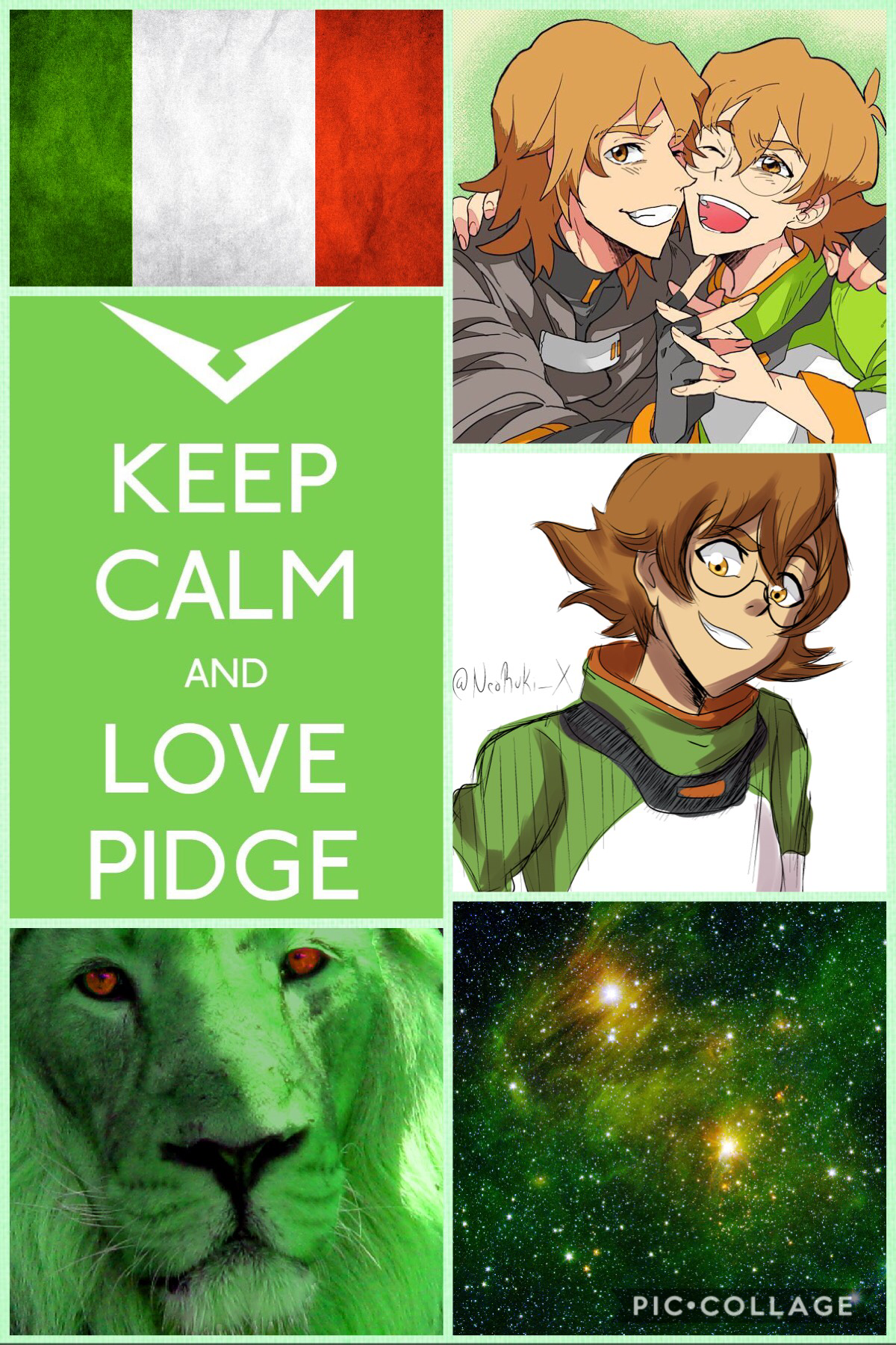 Pidge Holt, Paladin of the Green Lion