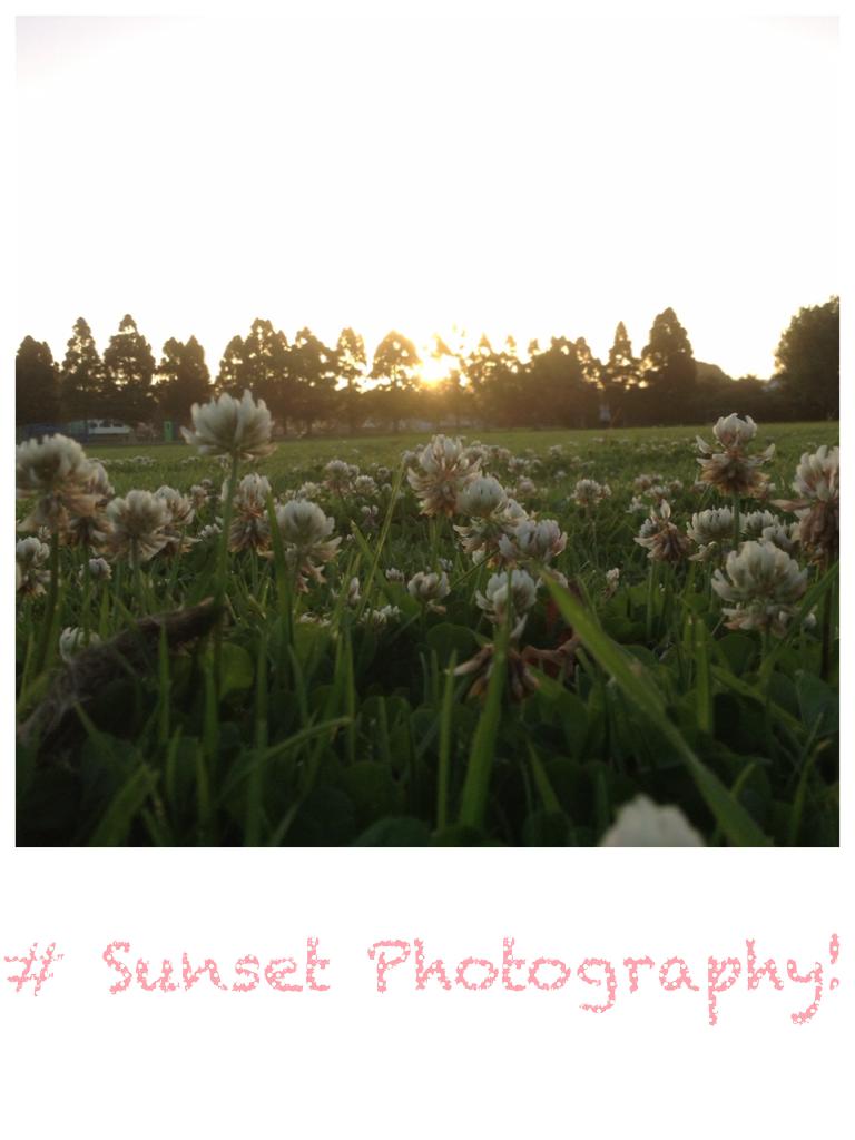 # Sunset Photography!