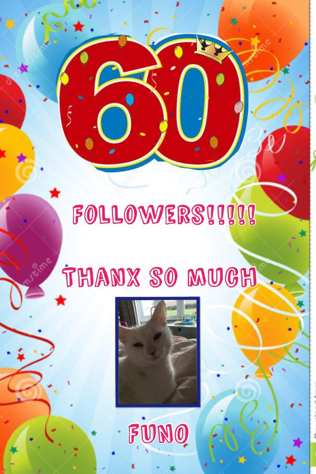 60 followers celebration